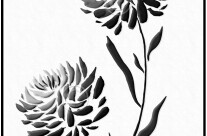 Sumi-e – Chrysanthemum – One